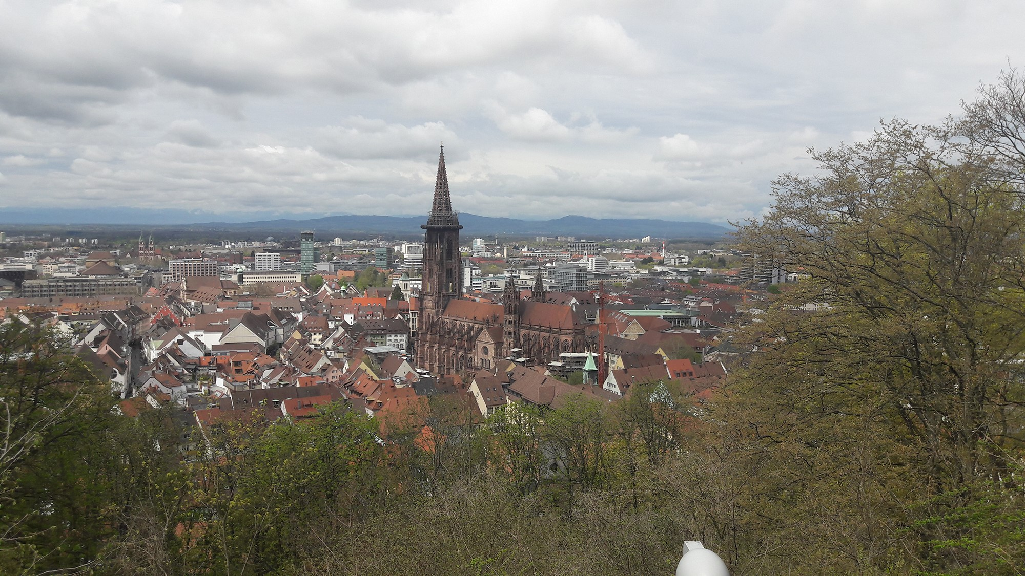 Foto van Freiburg im Breisgau