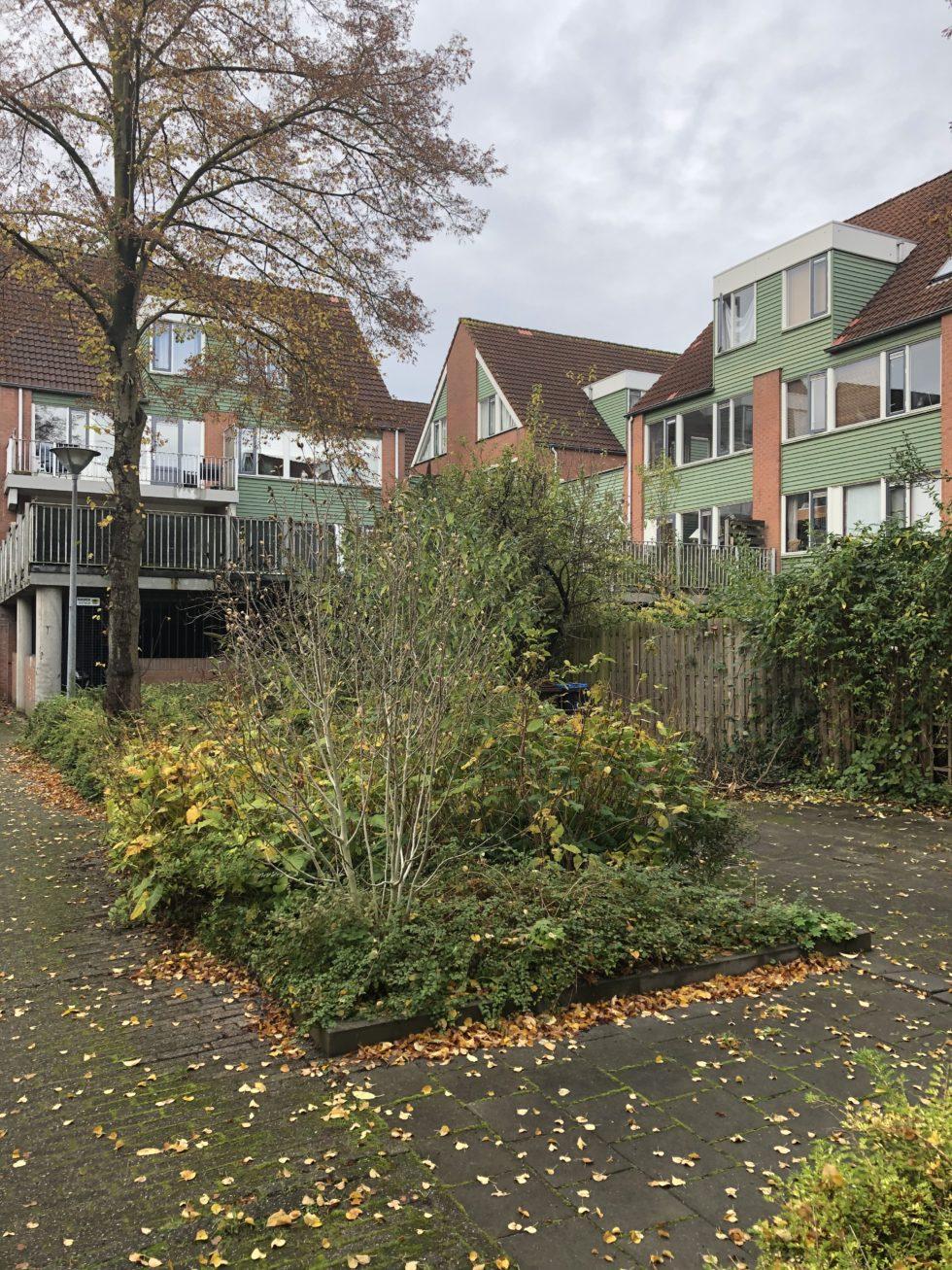 Foto van hoogbouw in de Utrechtse wijk Lunetten