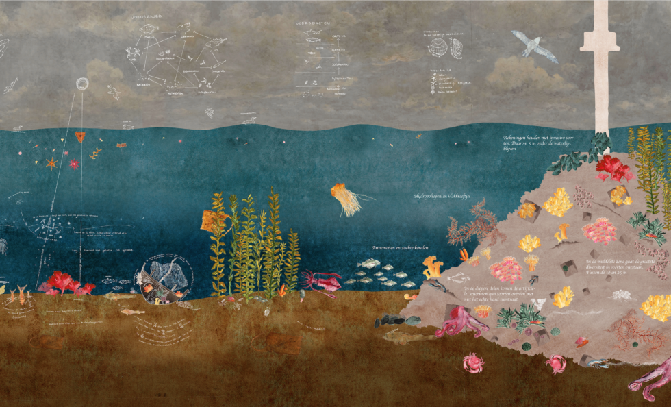 Afbeelding van de Doggersbank, het afstudeerwerk van Ziega van den Berk.